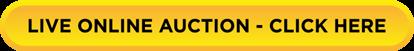 live auction link