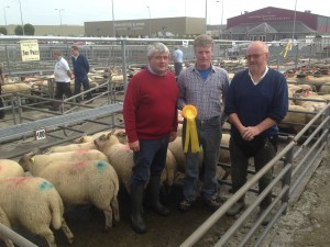show and sale of Lambs